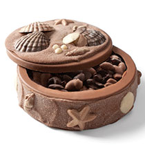 Filled Seashell Art Box Fill with Deluxe Nuts